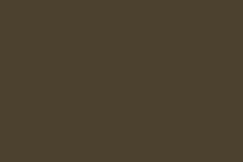 world's ugliest paint colour