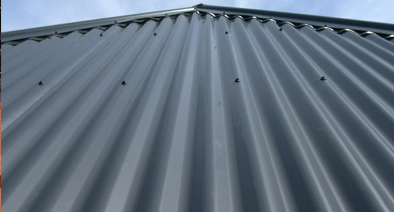 Roof Painting Auckland North Shore Hire Profesional