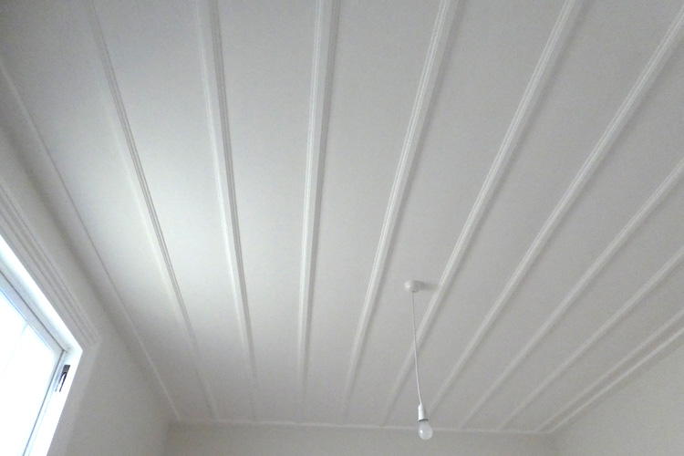 interior ceiling painting takapuna